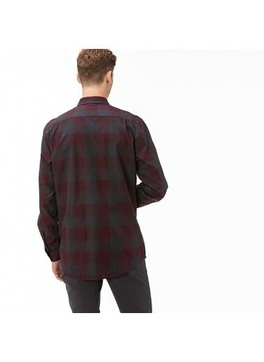 Lacoste Erkek Regular Gömlek CH2016.16R Bordo